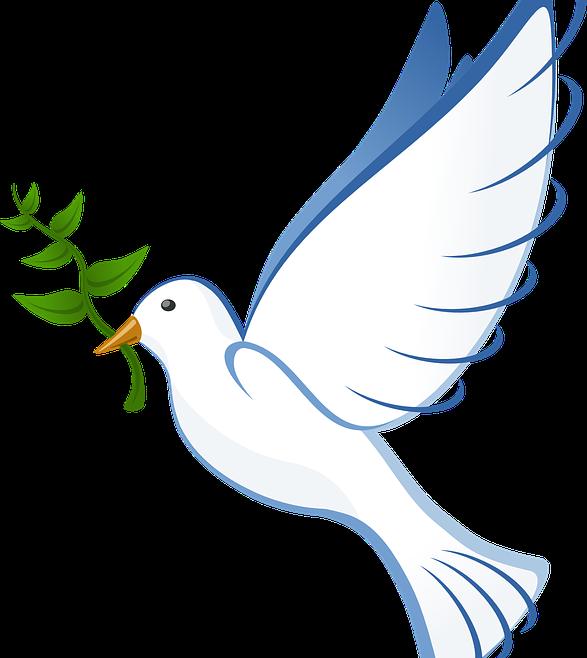 Meditatie voor Vrede